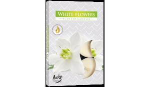 Vonná čajová svíčka White Flowers (bílé květy) 6 ks v krabičce