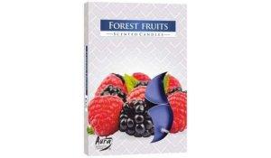 Vonná čajová svíčka Lesní ovoce 6 ks v krabičce
